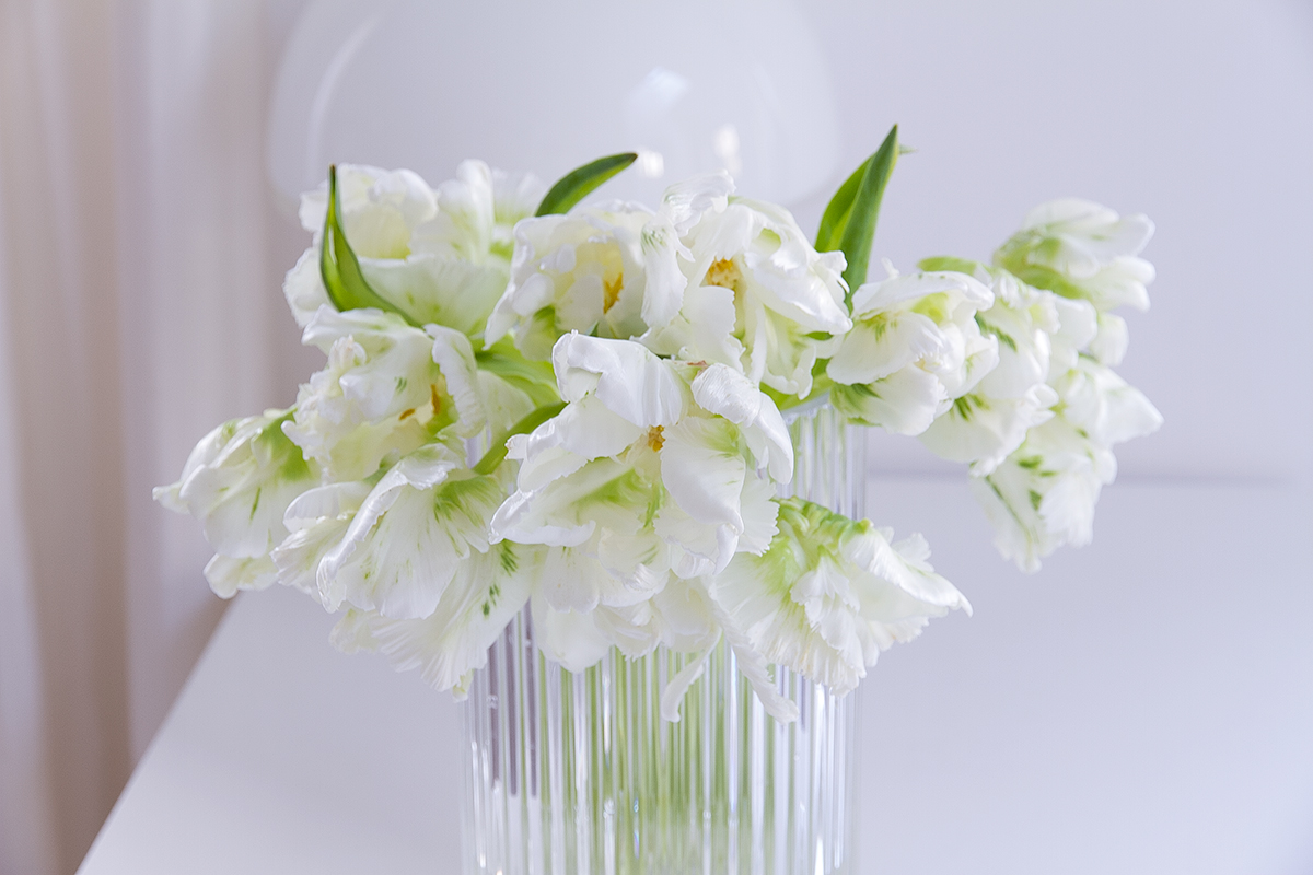 white tulips in lybngby glass vase spring flowers, blogpost Lifetimepieces.com