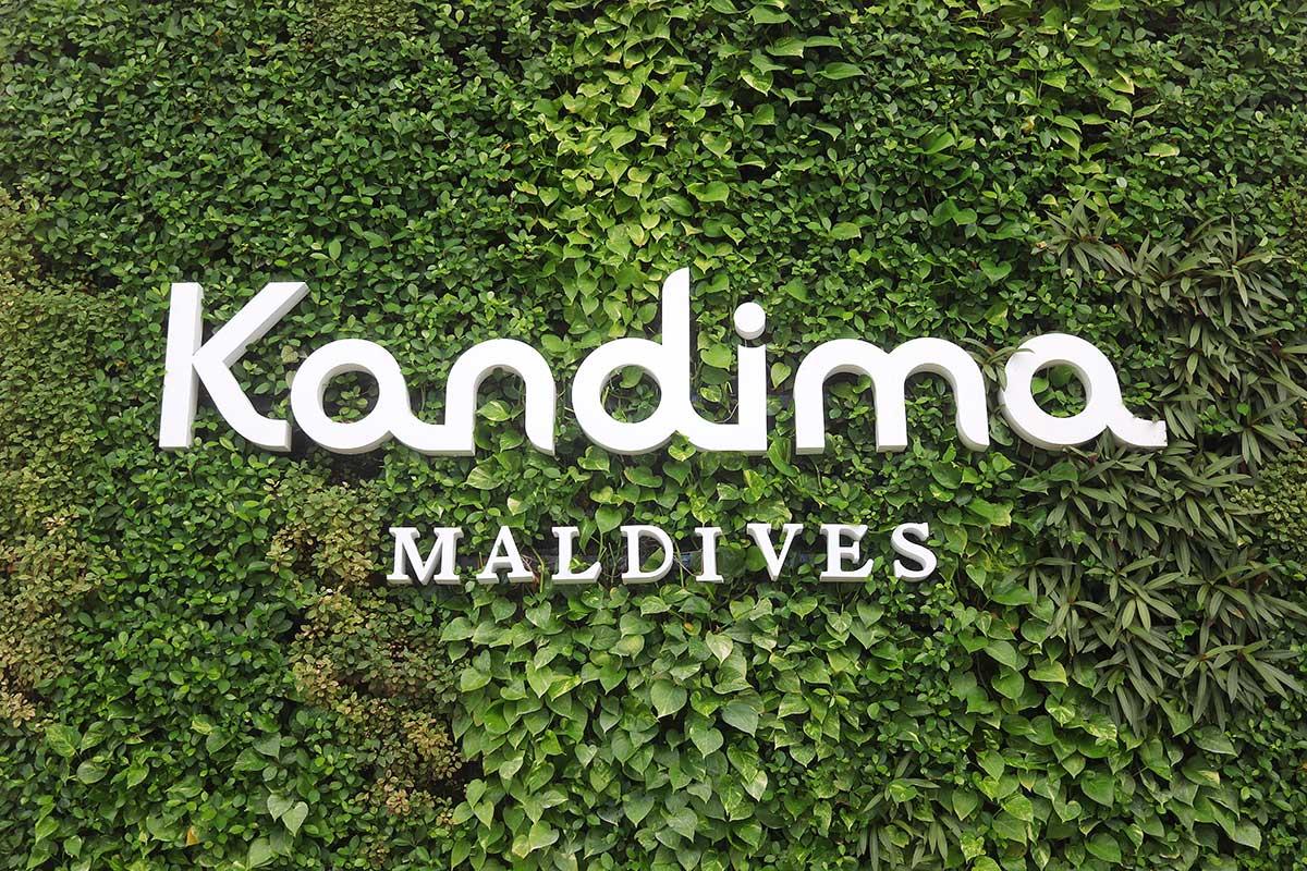 Kandima, Maldive islands, plant wall, vertical, plants, beach, palms, vegetatoin ,blog post about Maldives on lifetime-pieces.com
