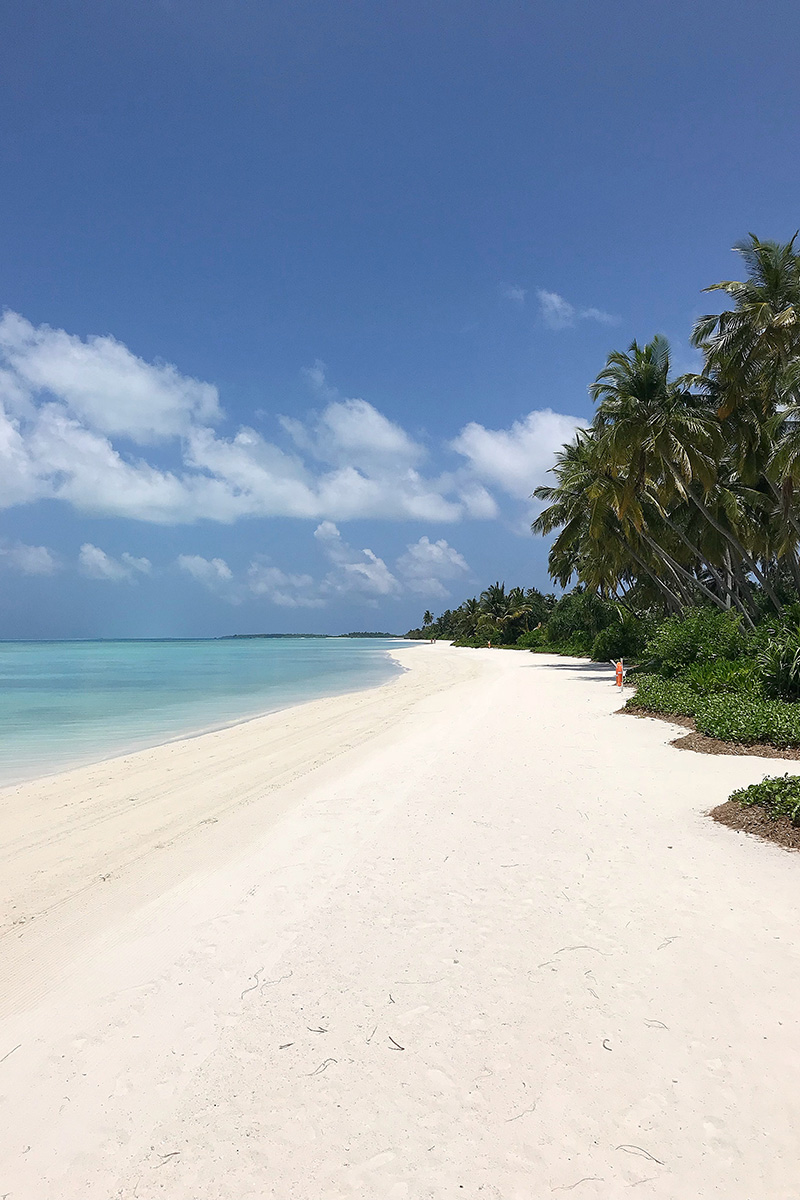 Kandima, palms, blue sky, beach, white sand, Indian Ocean, boats, blog post about Maldives on lifetime-pieces.com